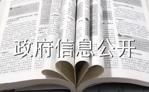 中华人民共和国信息公开条例实施细则问题有哪些?